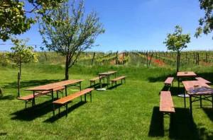 Gast_Weingärten